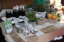 farmersmarket5.2.15img_2610