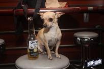 dogdays2014_2270